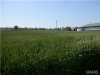0 Lot 14 Progress Dr Perryville MO 63775
